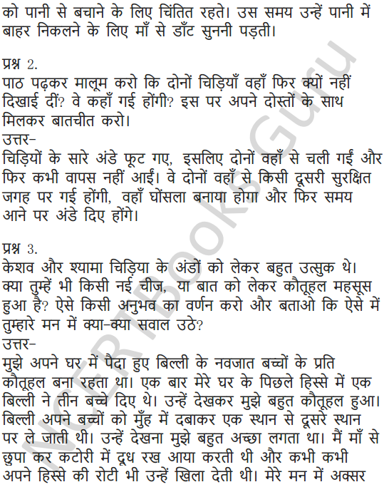 NCERT Solutions for Class 6 Hindi Chapter 3 नादान दोस्त 4