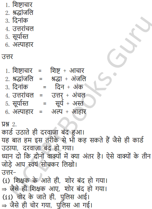 NCERT Solutions for Class 6 Hindi Chapter 6 पार नज़र के 8