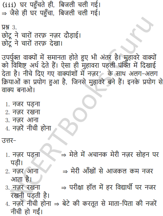 NCERT Solutions for Class 6 Hindi Chapter 6 पार नज़र के 9