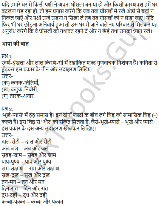 NCERT Solutions for Class 7 Hindi Chapter 1 हम पंछी उन्मुक्त गगन के 4