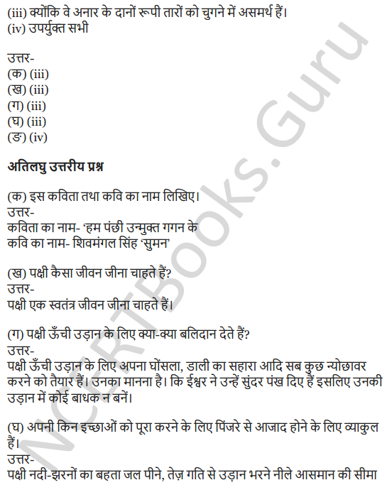 NCERT Solutions for Class 7 Hindi Chapter 1 हम पंछी उन्मुक्त गगन के 6