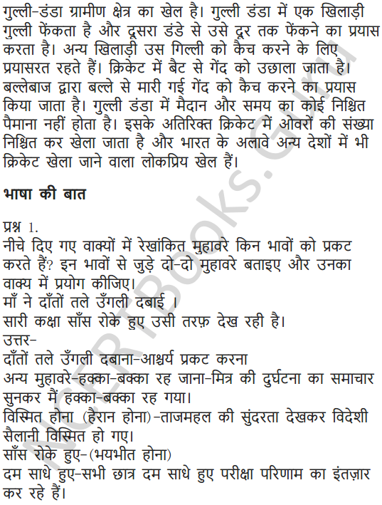 NCERT Solutions for Class 7 Hindi Chapter 12 कंचा