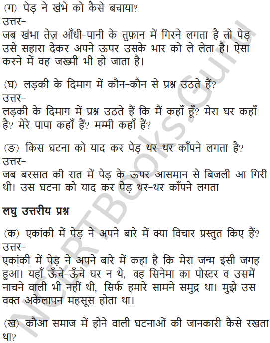 NCERT Solutions for Class 7 Hindi Chapter 7 पापा खो गए 12