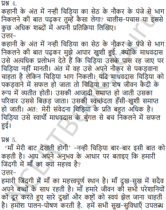 NCERT Solutions for Class 7 Hindi Chapter 9 चिड़िया की बच्ची 3
