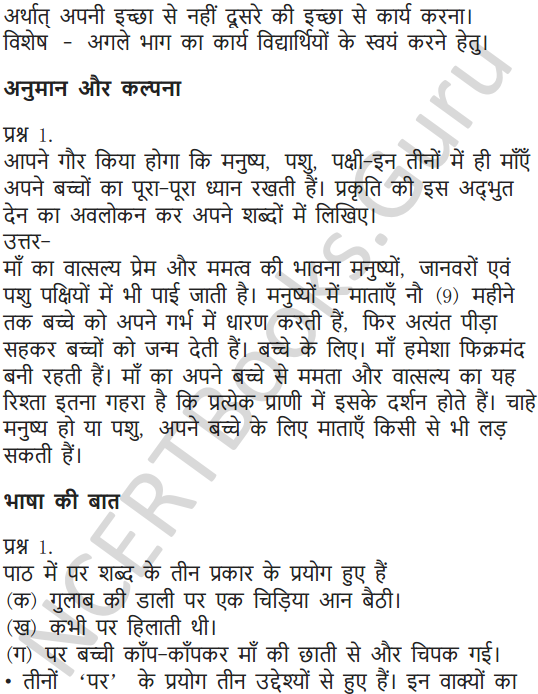 NCERT Solutions for Class 7 Hindi Chapter 9 चिड़िया की बच्ची 6