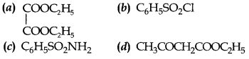 Chemistry MCQs for Class 12 with Answers Chapter 13 Amines 1