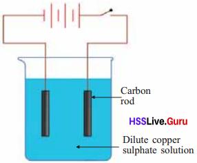 Kerala Syllabus 8th Standard Basic Science Solutions Basic Science Solution