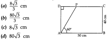 MCQ Questions for Class 10 Maths Application of Trigonometry with Answers 4
