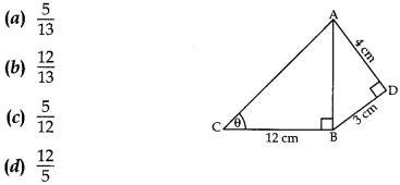 MCQ Questions for Class 10 Maths Application of Trigonometry with Answers 6