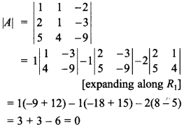 Maths MCQs for Class 12 with Answers Chapter 4 Determinants 26