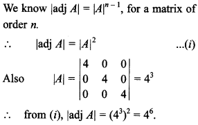 Maths MCQs for Class 12 with Answers Chapter 4 Determinants 52