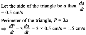 Maths MCQs for Class 12 with Answers Chapter 6 Application of Derivatives 9