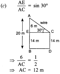 MCQ Questions for Class 10 Maths Application of Trigonometry with Answers 19