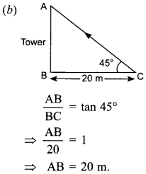 MCQ Questions for Class 10 Maths Application of Trigonometry with Answers 22