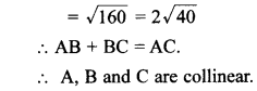 MCQ Questions for Class 10 Maths Coordinate Geometry with Answers 21