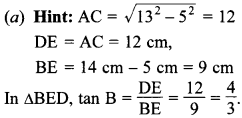 MCQ Questions for Class 10 Maths Introduction to Trigonometry with Answers 23