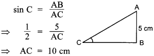 MCQ Questions for Class 10 Maths Introduction to Trigonometry with Answers 24
