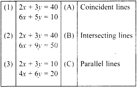 MCQ Questions for Class 10 Maths Pair of Linear Equations in Two Variables with Solutions 5