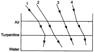 Physics MCQs for Class 12 with Answers Chapter 9 Ray Optics and Optical Instruments 4