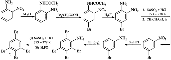 Chemistry MCQs for Class 12 with Answers Chapter 13 Amines 16