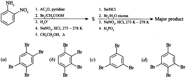 Chemistry MCQs for Class 12 with Answers Chapter 13 Amines 2