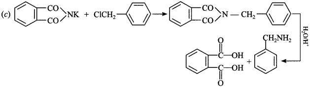 Chemistry MCQs for Class 12 with Answers Chapter 13 Amines 22