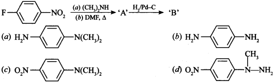 Chemistry MCQs for Class 12 with Answers Chapter 13 Amines 8