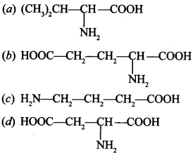 Chemistry MCQs for Class 12 with Answers Chapter 14 Biomolecules 2