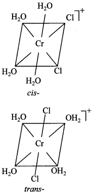 Chemistry MCQs for Class 12 with Answers Chapter 9