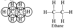 MCQ Questions for Class 10 Science Carbon and Its Compounds with Answers 18