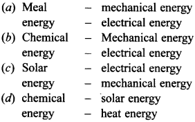 MCQ on Sources of Energy