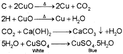 Plus One Chemistry Notes Chapter 12 Organic Chemistry Some Basic Principles and Techniques 29