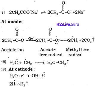 Plus One Chemistry Notes Chapter 13 Hydrocarbons 5