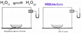 Plus One Chemistry Notes Chapter 7 Chemical Equilibrium 2